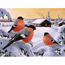 Jan Bergerlind Christmas Postcards - Bullfinches - Honey Beeswax