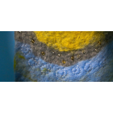 Felted Landscape - Rio 2016