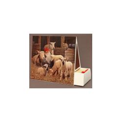 Jan Bergerlind - Matchboxes - Lambs - Honey Beeswax