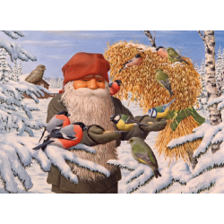 Tomte feeding the Birds